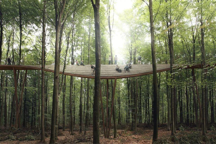 dk treetop 3